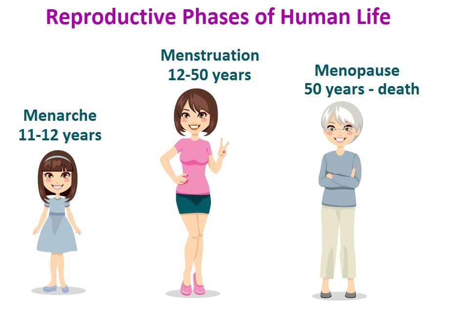 Semakin Telat Dapat Menstruasi Pertama Semakin Panjang Umur, Benarkah?