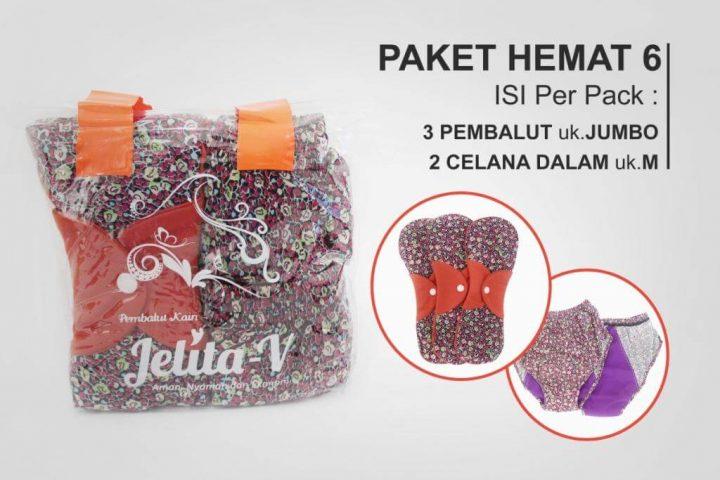 paket-hemat-6-jelita-v